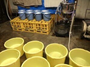 【酒造り124日目】洗米作業風景です。